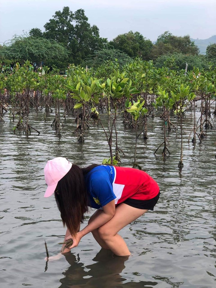 One Rotary, One District Mangrove Planting and Coastal Cleanup